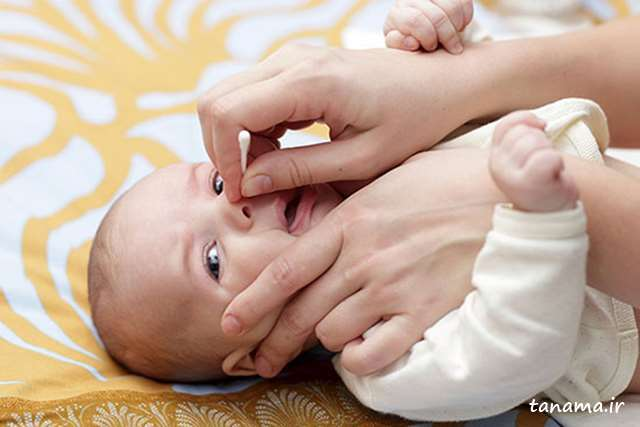 بینی نوزاد