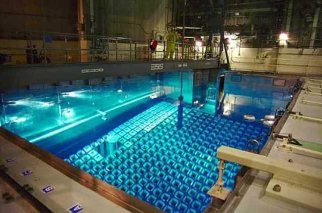 راکتور هسته ای امارات
