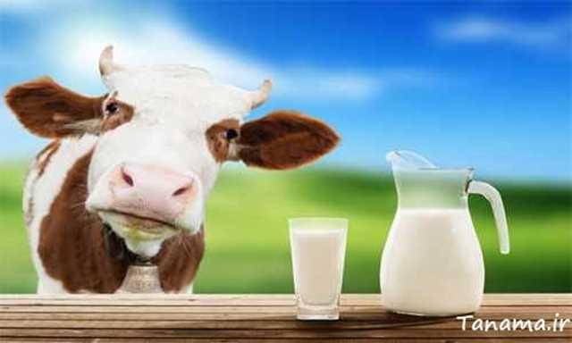 زمان مصرف شیر