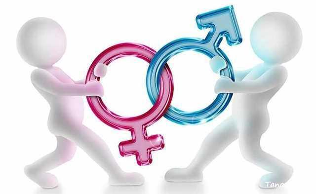 جنسیت